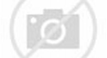 Koran Gratis - Arist Merdeka Sirait, Ketua Komnas Perlindungan Anak ...