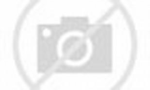 Aplikasi Android untuk Menambah Bingkai Foto Keren Berbagai Tema