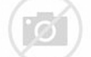 Knalpot Jupiter Gudang Helm Dan Aksesoris Motoraksesoris Motor