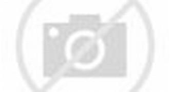 Ini Harga Blackberry Dakota, Hp BB Bold 9900 Terbaru Oktober 2014