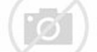 Artikel Tentang Animasi Untuk Blackberry yang ada di belfend.web.id