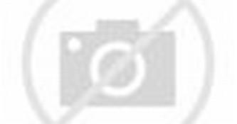 Harga Lemari Pakaian 3 Pintu Olympic LCB 016285 Birdnest