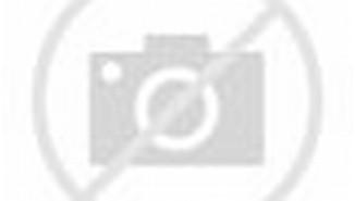 FURNITURE TEMPAT TIDUR MINIMALIS MAHONI MODEL UDIN 166 X 143 X 30
