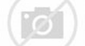 Dekorasi Meja Pengantin dan Hiasan Dewan untuk Majlis Resepsi Ili ...