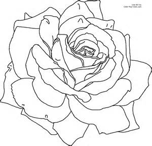 girl with a rose Colouring Pages