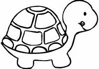 Turtle Coloring Pagescom