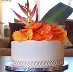 Happy Birthday Hawaiian Theme