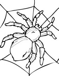 Spider-coloring-pages-09