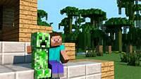 Minecraft Steve With Creeper