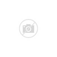 Pink Scalloped Frame  And Black With An Inner