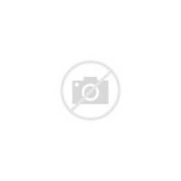 Round Birthday Cake With Flowers