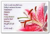 Wedding Anniversary Wish Quote