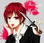 Karma Akabane Anime