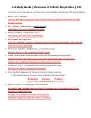 44 Overview Of Cellular Respiration Study Guide Answer Key 238293