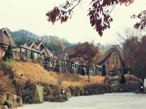Goodstay Neverland Pension South Korea