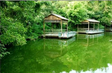 Ningbo Lvye Mountain Villa China