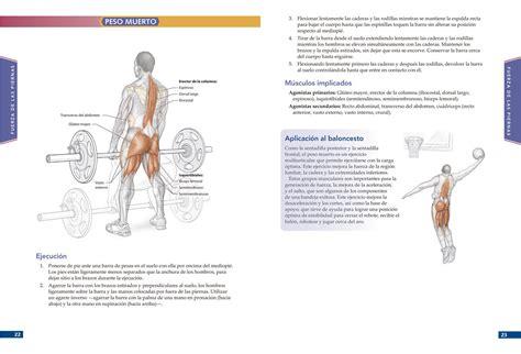 Anatomia Del Baloncesto