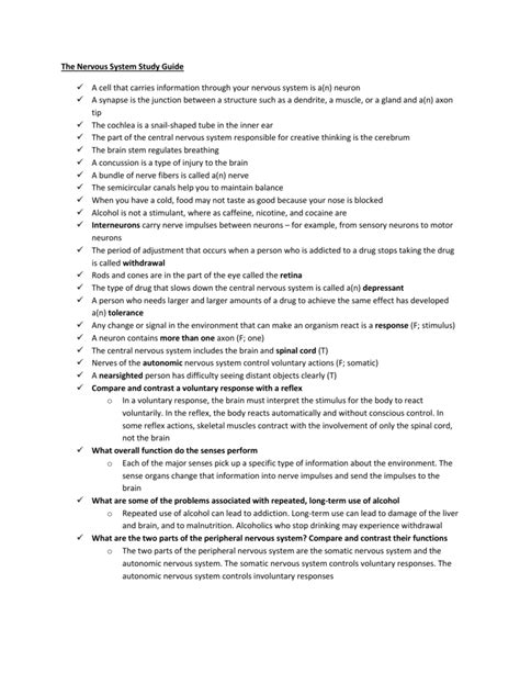 Anatomy Nervous System 7 Study Guide Answers