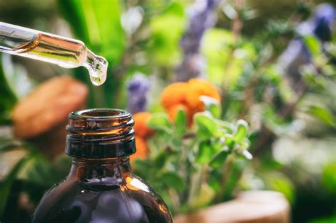 Aromatherapy Healing With Essential Oils