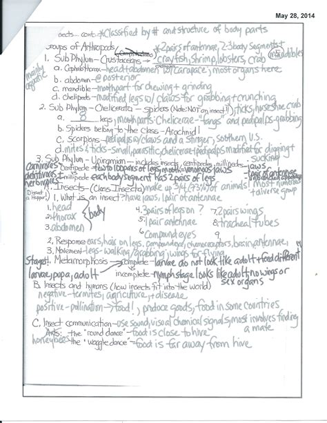 Arthropods And Echinoderms Chapter Test Answer Key