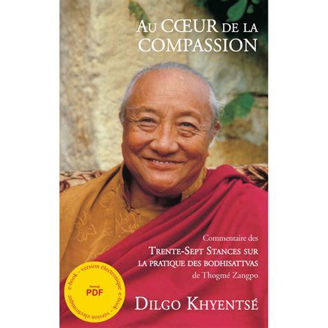 Au Coeur De La Compassion Commentaire Des Trente Sept Stances Sur La Pratique Des Bodhisattvas