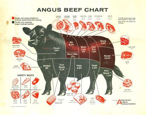 Beef Meat Diagram