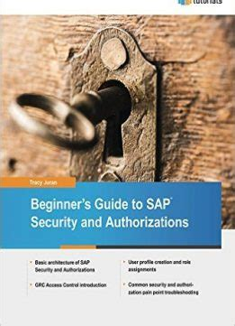 Beginner S Guide To Sap Security And Authorizations