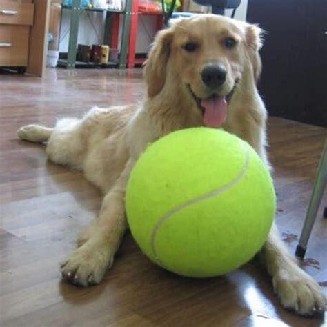 Big Balle De Tennis Pour Chien 9 5 Pouces