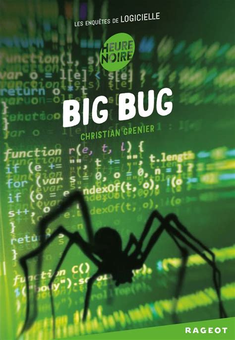 Big Bug Les Enquetes De Logicielle