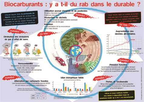 Biocarburants : y a-t-il du rab dans le durable ?