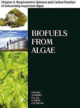 Biofuels From Algae English Edition