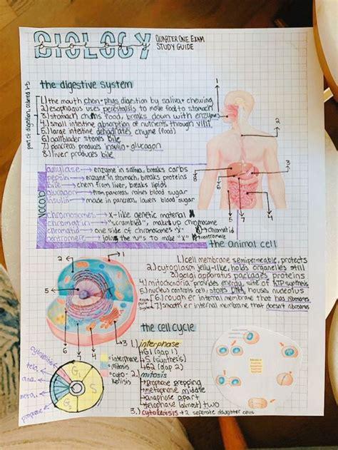 Biology 49 Study Guide