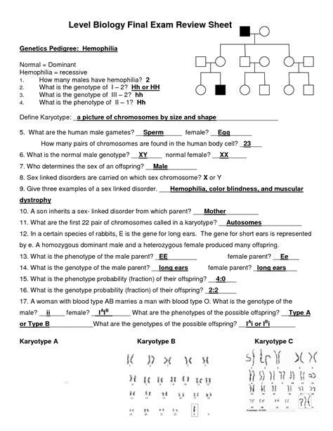 Biology Lab Answer Key Karyotype