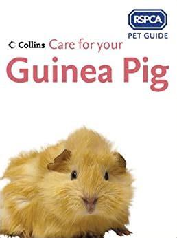 Care for your Guinea Pig (RSPCA Pet Guide)
