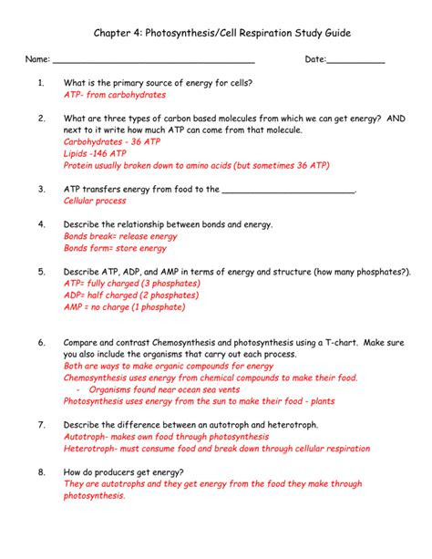 Cellular Energy Study Guide Answers For