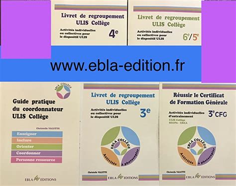 Coordonnateur Ulis College Guide Pour Definir Missions Et Enjeux De Ce Poste