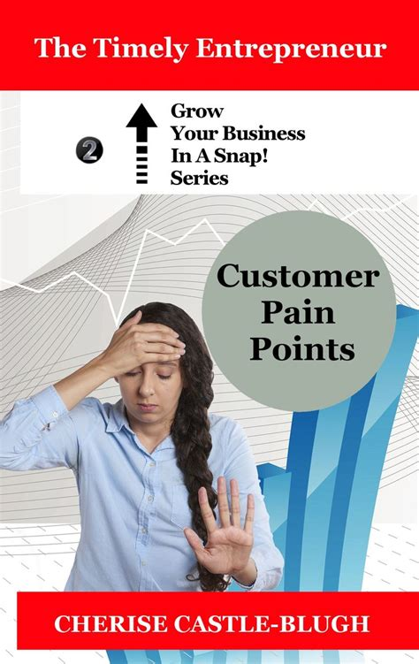 Customer Pain Points Grow Your Business In A Snap Volume 2