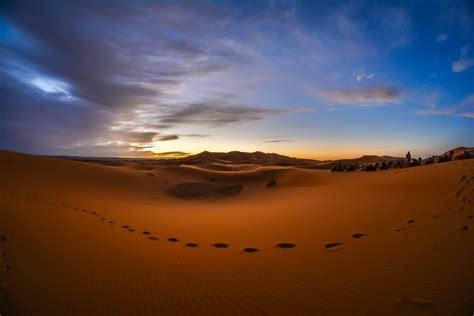Dans Le Ciel Du Desert