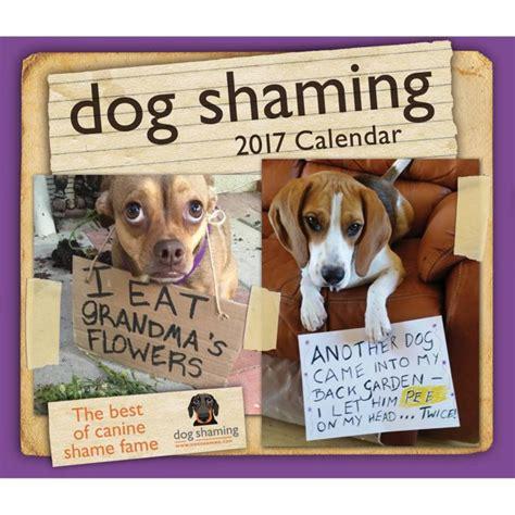 Dog Shaming 2017 Day-to-Day Calendar