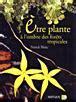 Etre Plante A Lombre Des Forets Tropicales