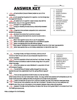 Evolution Review Worksheet Answers