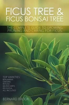 Ficus Tree And Ficus Bonsai Tree The Complete Guide To Growing