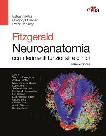 Fitzgerald. Neuroanatomia con riferimenti funzionali e clinici