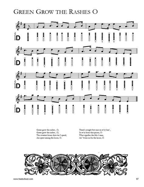 Flute Irlandaise Pour Debutants Volume 1