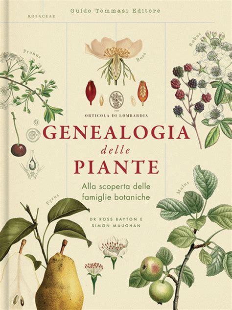 Genealogia Delle Piante Germogli