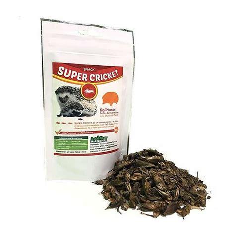 Grillos Crickets Pebble Plus Bilingual