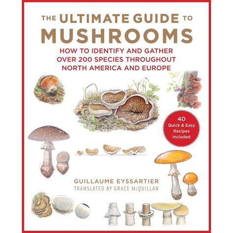Guide To Fungi Identification