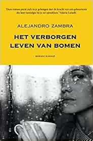 Het Geheime Leven Van Bomen Dutch Edition