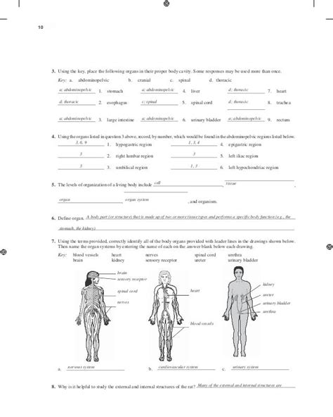 Holes Human Anatomy And Physiology 13th Edition Lab Manual Answer Key