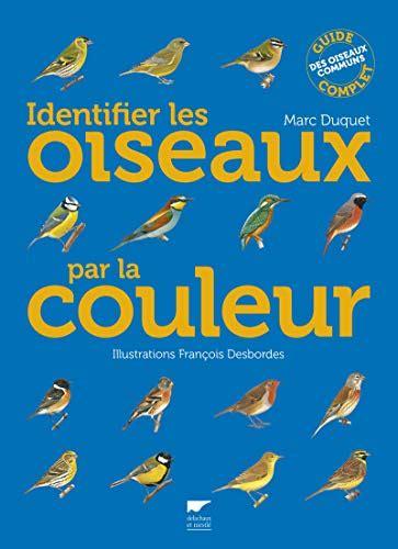 Identifier Les Oiseaux Par La Couleur Guide Complet Des Oiseaux Communs